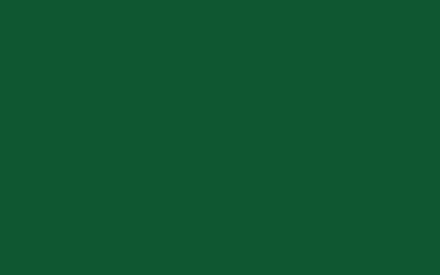 NP-03